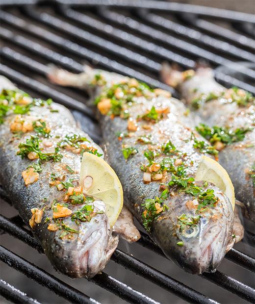 rezept-forelle-vom-grill-karin-ratschiller